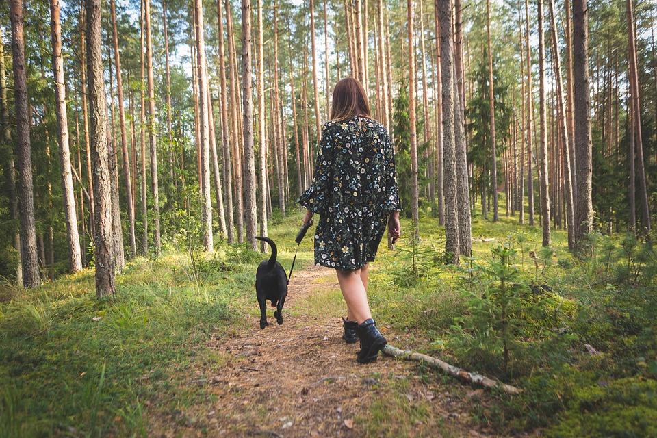 Mindfulness in pillole: benessere psicofisico per tutti – la meditazione camminata